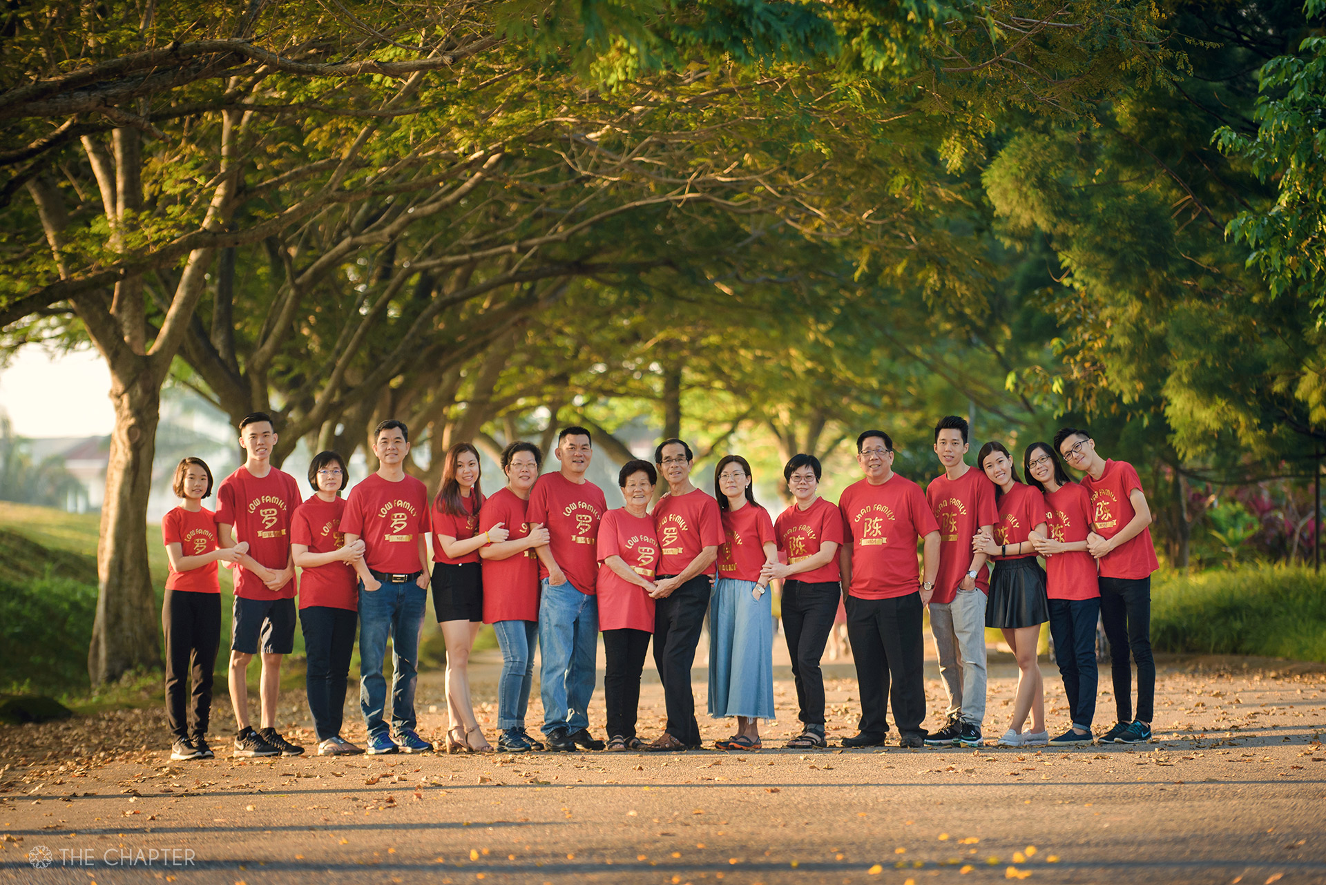 chinese new year family photo ipoh, cny 2020 family portrait ipoh, cny family portrait ipoh malaysia, cny family photo ipoh, the chapter ipoh